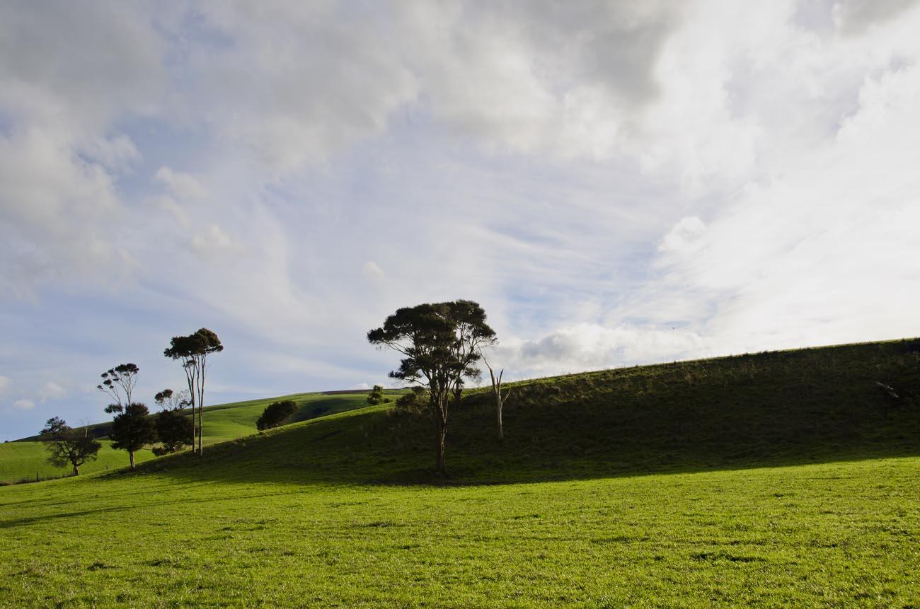 Wairarapa-Rural-Wellington-NZ-Landscape-Photographer-Kevin-Hawkins