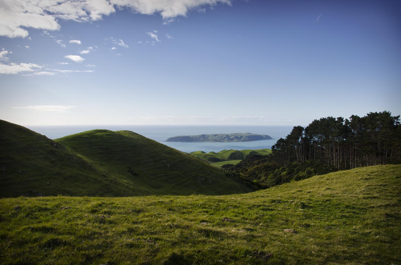 Wellington NZ Landscape Photographer Kevin Hawkins Mana Island Te Araroa Trail Stock Photo
